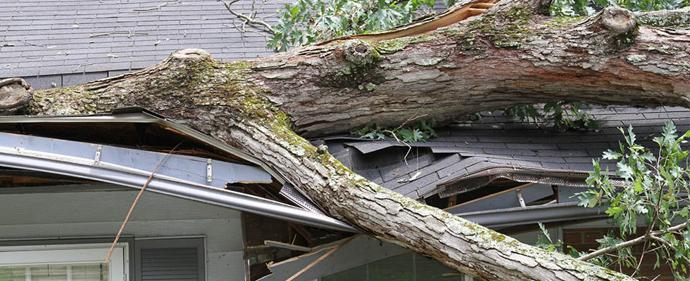 April Showers Bring May Flowers…and Storm Damage