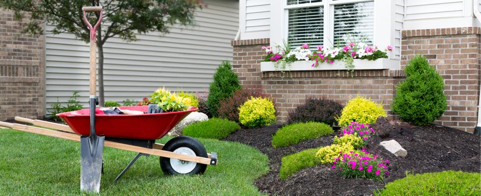 FAQ: Landscaping